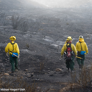 Firefighters walking in scorched land