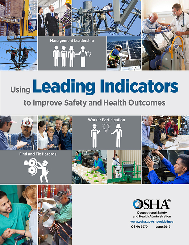 image 6 - OSHA Leading indicators